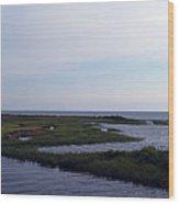 Keaton Beach Wetland Wood Print