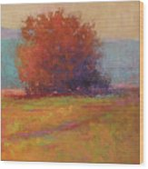 Keene Valley Field Wood Print