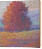 Keene Valley Wood Print