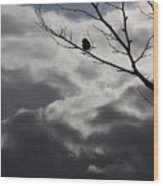 Keeping Above The Storm Wood Print