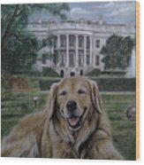 Kelli On The White House Lawn Wood Print