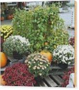 Kelly Garden Mums  Pumpkins And Duck Or Goose Wood Print