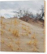 Kelso Dune Slopes Wood Print