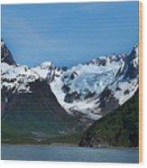 Kenai Fjords National Park Alaska Wood Print