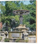 Kenan Memorial Fountain Wood Print