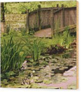 Kenilworth Footbridge Wood Print