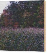 Kensington 10  Wood Print