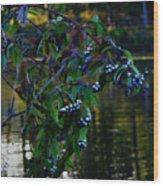 Kensington Wood Print