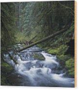 Kentucky Creek Wood Print
