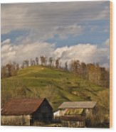 Kentucky Mountain Farmland Wood Print
