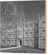 Kenyon College Bexley Hall Wood Print by University Icons