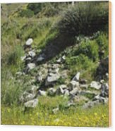 Kern River Canyon Road Wood Print
