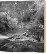 Kerosene Creek Wood Print