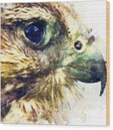 Kestrel Watercolor Painting Wood Print