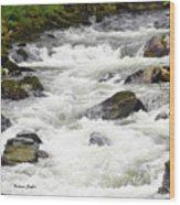 Ketchikan Creek Of Creek Street Detail Wood Print