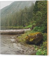 Ketchikan's Misty Fjord Wood Print