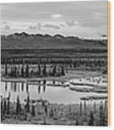 Kettle Pond And The Alaska Range Wood Print
