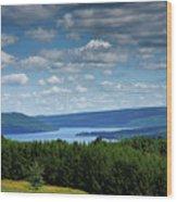 Keuka Landscape V Wood Print by Steven Ainsworth