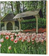 Keukenhof Gardens Wood Print
