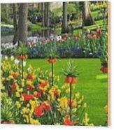 Keukenhof Ornamental Garden. Wood Print