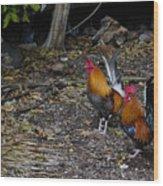 Key West Chickens Wood Print