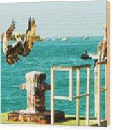 Key West Landing Wood Print