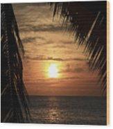 Key West Palm Sunset 2 Wood Print