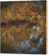 Keyhole Reflections Wood Print