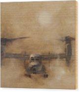 Kicking Sand Wood Print by Stephen Roberson