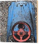 Kid Car Wood Print