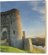 Kidwelly Castle 3 Wood Print