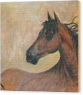 Kiger Mustang Wood Print