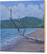 Kihei Beach Tree Wood Print