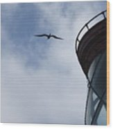 Kilauea Lighthouse And Bird Wood Print