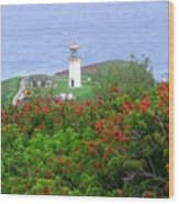 Kilauea Lighthouse Kauai Hawaii Wood Print