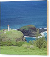 Kilauea Lighthouse Wood Print