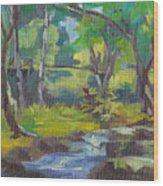 Kilauea Stream Wood Print