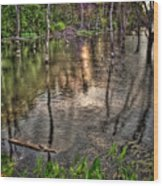 Kill Creek 8283 Wood Print