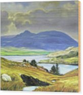 Killary Harbour County Mayo Wood Print