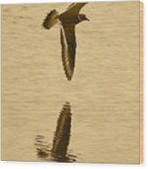 Killdeer Over The Pond Wood Print