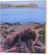 Kimmeridge Bay In Dorset Wood Print