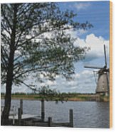 Kinderdijk Windmill Wood Print