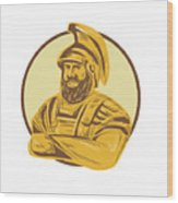 King Agamemnon Arms Crossed Circle Drawing Wood Print