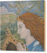 King David In His Youth Wood Print