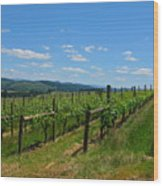 King Estate Vineyard Wood Print