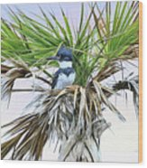 King Fisher Palm Wood Print