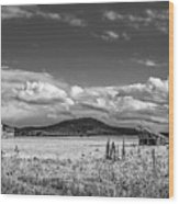 King Homestead_bw-1593 Wood Print