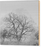 King Mountain Monochrome Wood Print