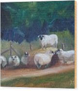 King Of Green Hill Farm Wood Print by Donna Tuten