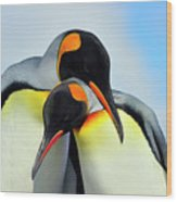 King Penguin Wood Print by Tony Beck